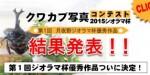第1回 2015月夜野ジオラマ杯優秀作品表彰ページ