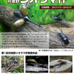 'Tsukiyono International Competition of Diorama with Stag or Rhinoceros Beetles Specimens'