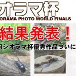 第2回 2016月夜野ジオラマ杯優秀作品表彰ページ