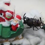 【サンタクロースのお手伝い】クワカブジオラマ写真コンテスト:エントリーNO1