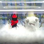 【冬だね、雪だね、オオクワ君】クワカブジオラマ写真コンテスト:エントリーNO3