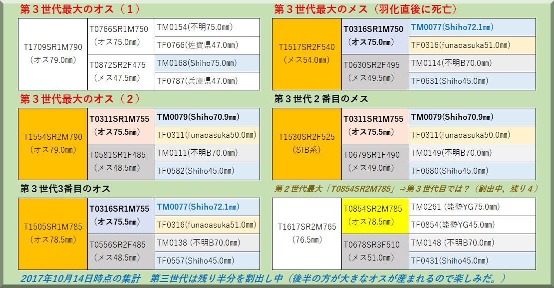 マガジン-201711-1-血統表2017途中