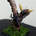 【ノコギリクワガタとスズメバチ】クワカブジオラマ写真コンテスト:エントリーNO11