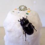 【目指せ!雪の女王!】クワカブジオラマ写真コンテスト:エントリーNO14